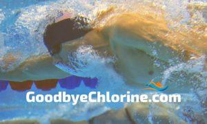 chlorine removal shampoo