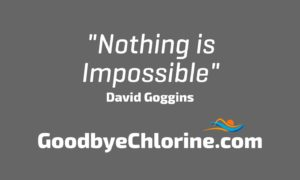 gogoggins nothing is impossible