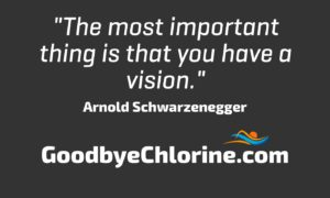 Arnold Schwarzenegger, vision success